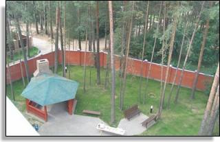 yard_310x197_4